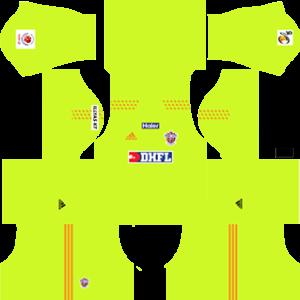 FC Pune City DLS Goalkeeper Kit 2016-2017