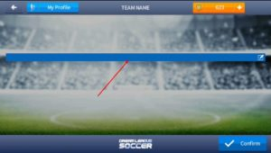 Write Team name dream league soccer