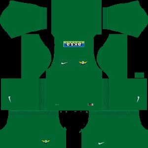Akhisar Belediyespor DLS 2017-2018 Away Kit