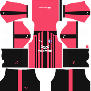 Cerezo Osaka DLS 2017-2018 Third Kit