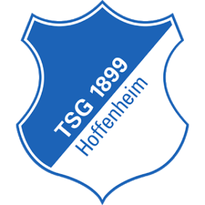 TSG Hoffenheim Logo 512×512 URL