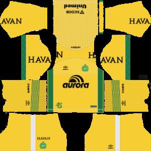chapecoense fc goalkeeper home kit 2018-2019 dream league soccer