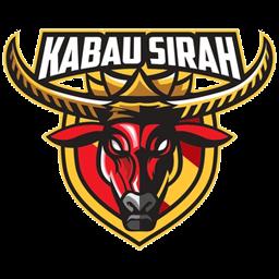 buffalo Logo DLS