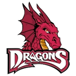 dragon logo dream league soccer