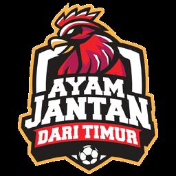 hen Logo DLS