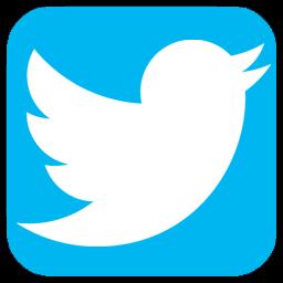twitter dls logo