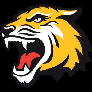 tiger 512x512 logo