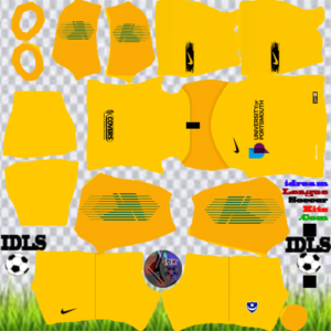 Portsmouth FC gk away kit 2020 dream league soccer