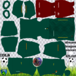 Bolivia DLS Kits 2021