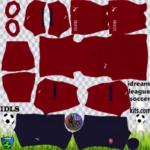 Czech Republic DLS Kits 2021