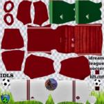 Hungary DLS Kits 2021