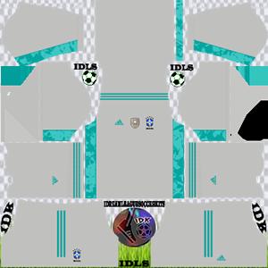 Brazil DLS Kit 2021 third For DLS19